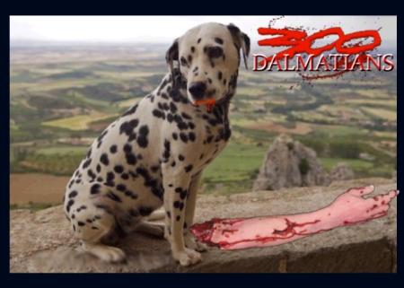 300 dalmatians